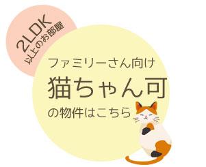 familypetcat