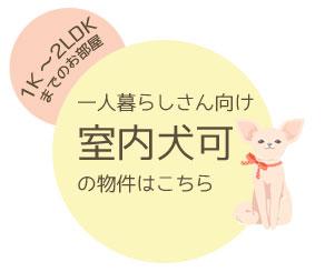 tanshinpetdog
